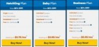Hostgator hosting package  60% OFF